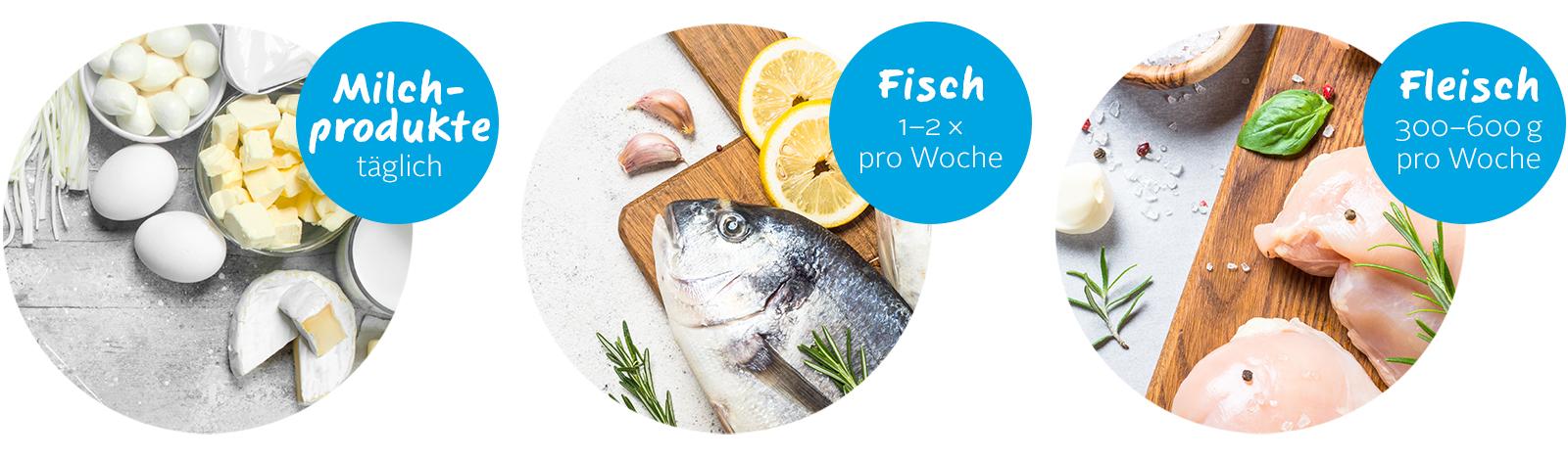Fleisch Fisch-