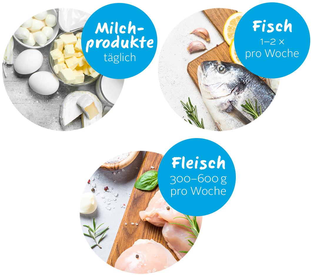 Fleisch Fisch mobile