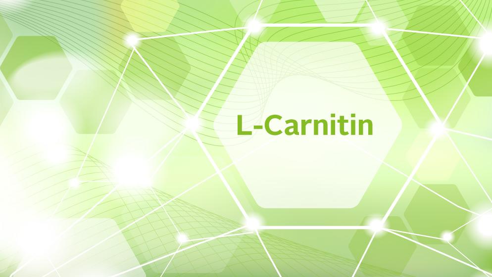 L-Carnitin blog overview x