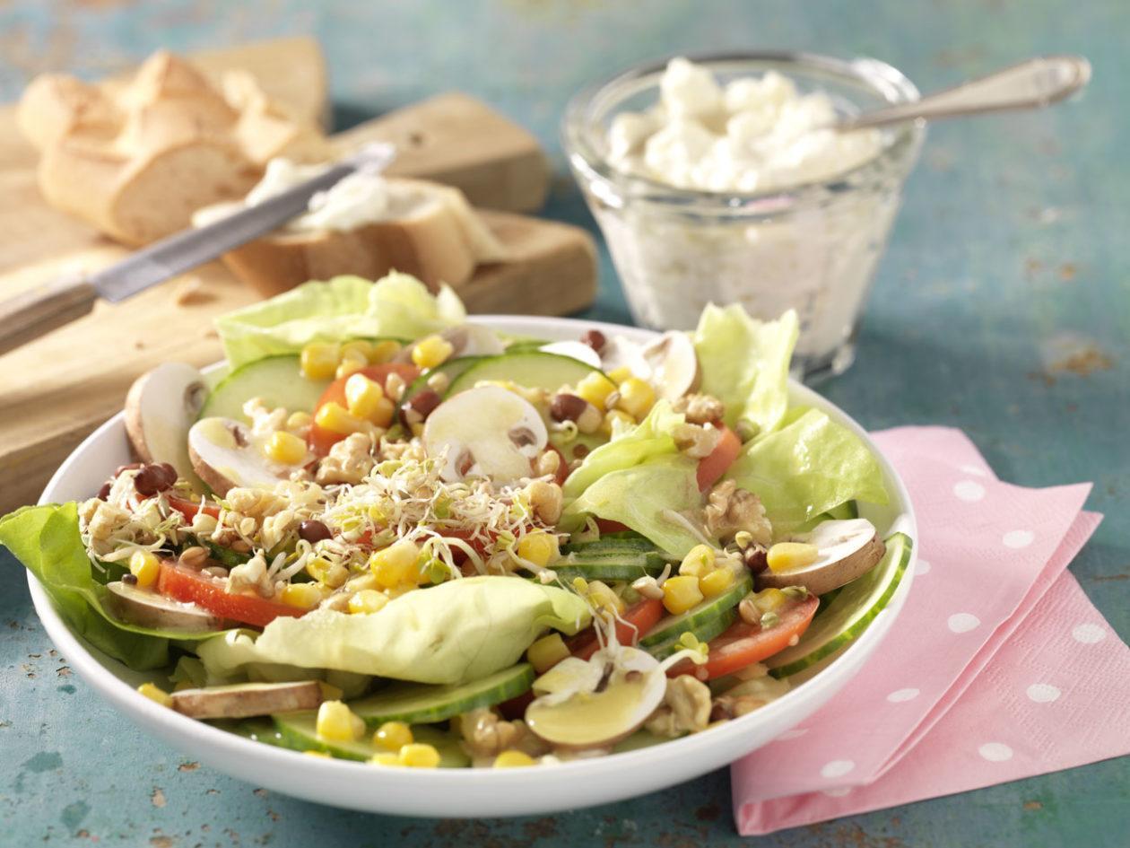 Fitness-Salatteller - BCM Diät Rezepte.at
